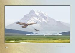 print code:  SC Arctic Glacier-20
