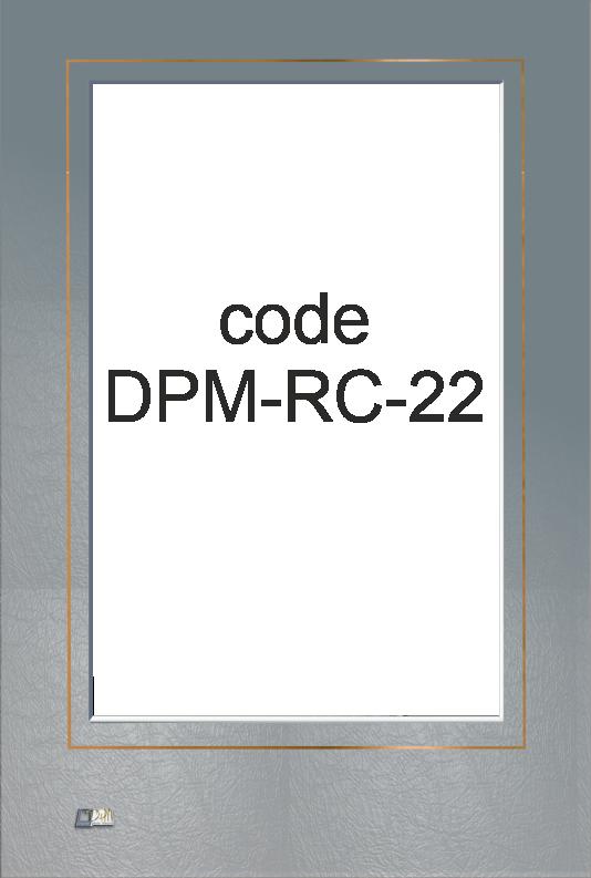 DPM-RC-22