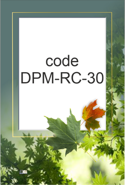 DPM-RC-30