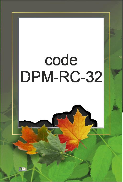 DPM-RC-32
