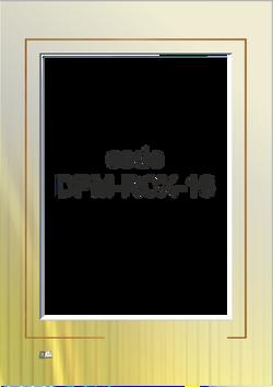 print code: DPM-RCX-16