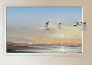 SC217B-08_edited.jpg