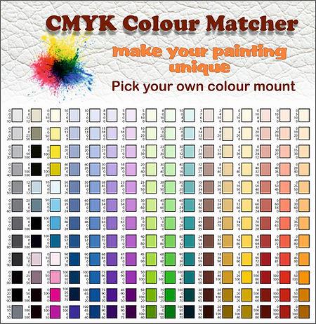 CMYK Colour Matcher