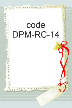 DPM-RC-14