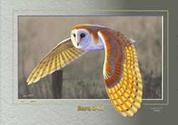 print code Sc Owl1-09