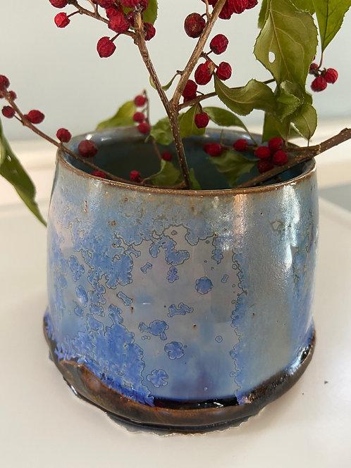 Paperwhite Pot Blue #1