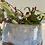 Thumbnail: Oval Blue Paperwhite Pot #7