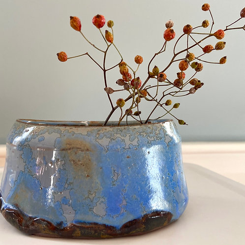 Oval Paperwhite Pot Blue #2