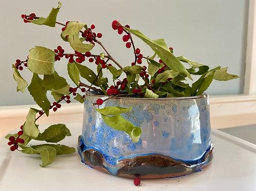 Oval Blue Paperwhite Pot #7
