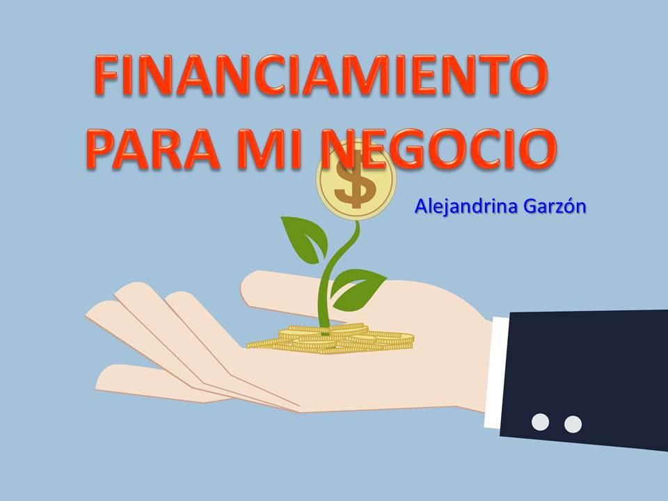 financiamiento, negocio, empresarias, capital,dinero