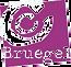 logo%20cc%20breughel_edited.png