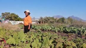 Pumla Zibeni- new addition to the farm team
