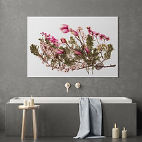 Debbie Wolff's art and photography can go in your spa or interior space with a minimal, zen, organic, earthy look.