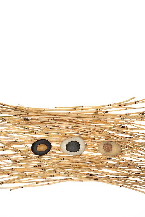 Horsetail Nest