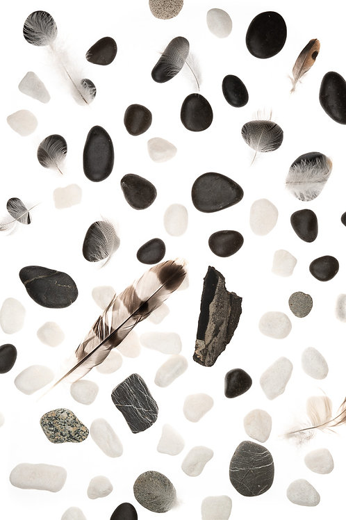 Feathers And Rocks