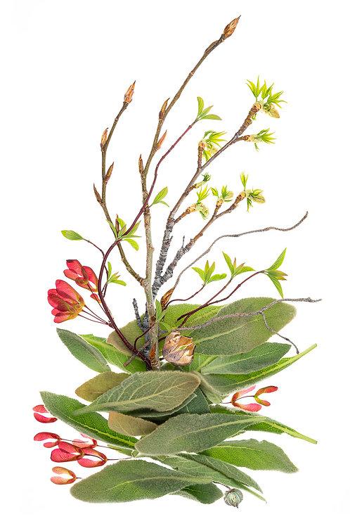 Weed Ikebana