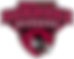 Roanoke_Athletic_Logo.png
