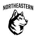northeastern_edited.jpg