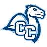conn coll.png