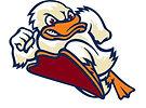 stevens_ducks.jpg
