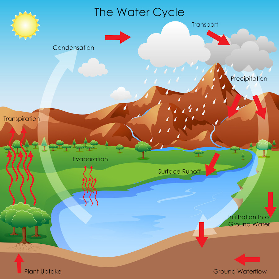 Water Cycle Graphic