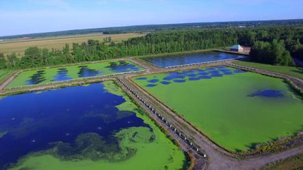 Sewer Lagoon Capacity Upgrade