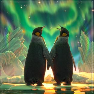Penguin Aurora