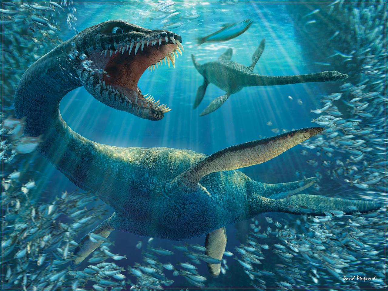 Plesiosaur Art