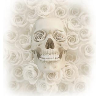 Skull Roses White