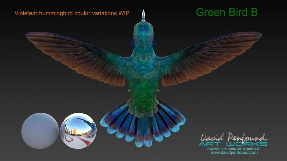 Hummingbird Variations