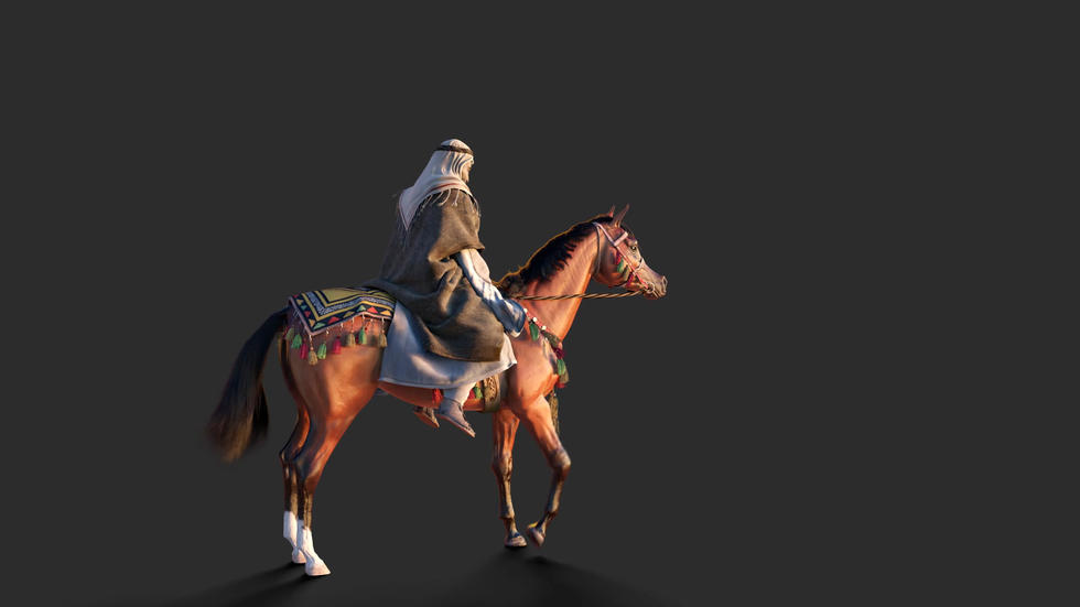 Horse and rider combinations