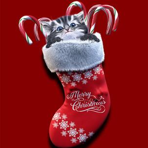 Kitten Stocking