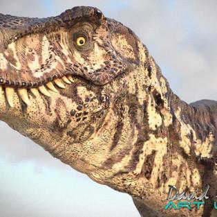 T Rex Stare!