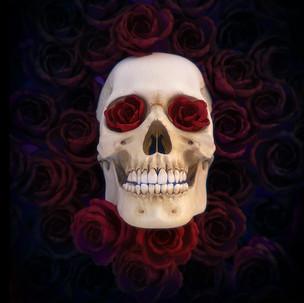 Skull Rosses