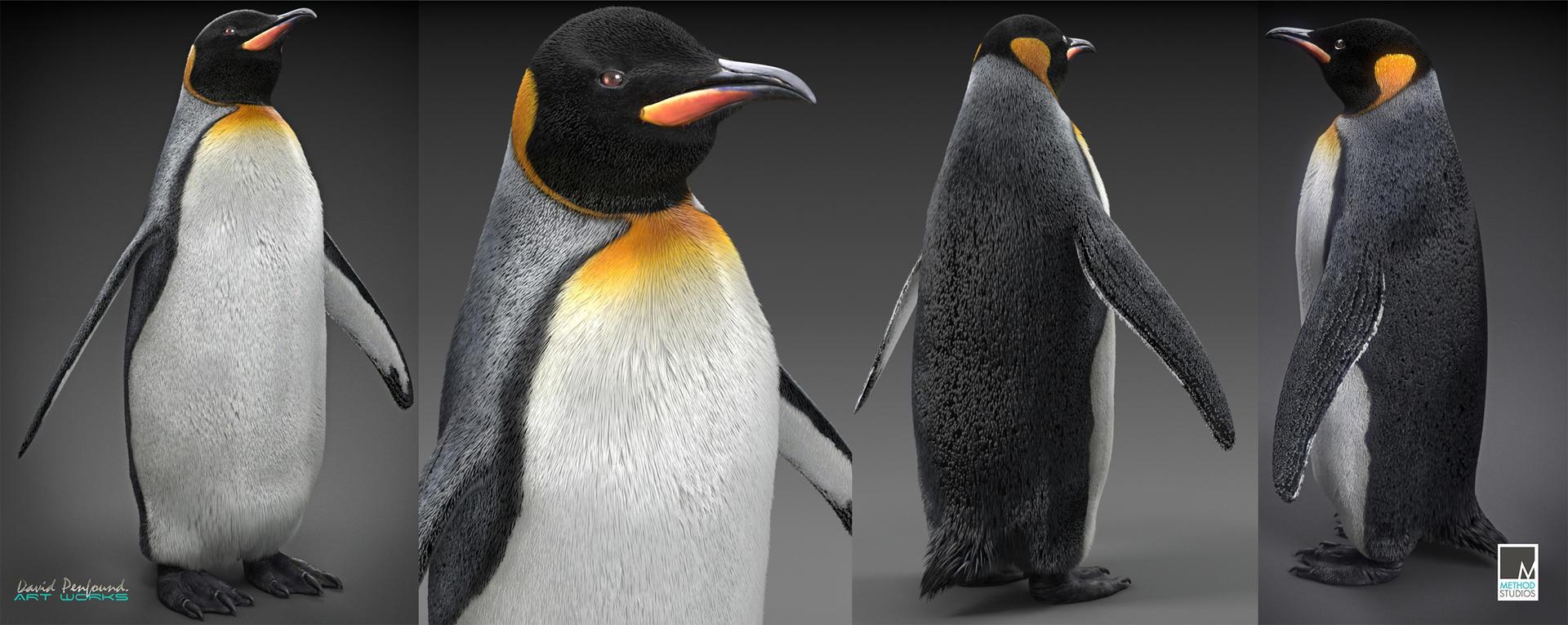 Penguin wips