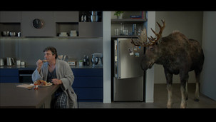 Laminex Moose