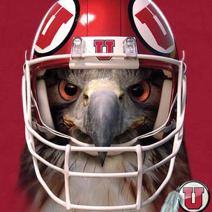 Utah Hawk