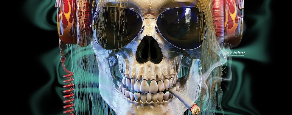 skull rockerHeader.jpg