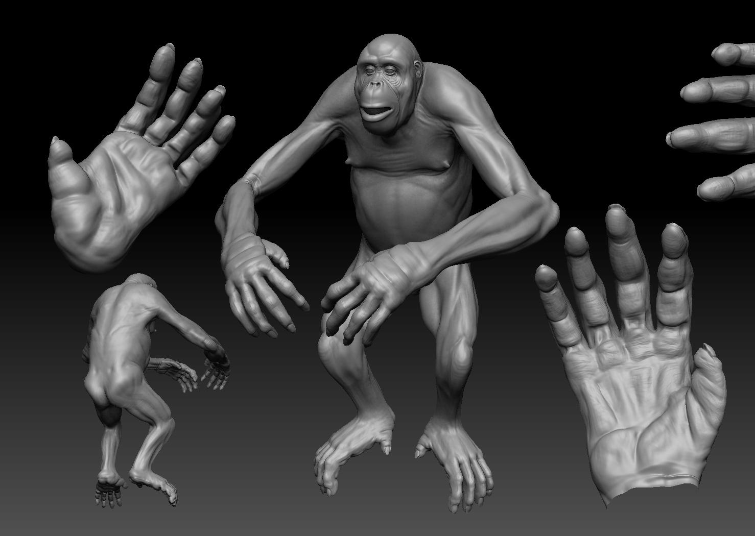 Base Sculpt