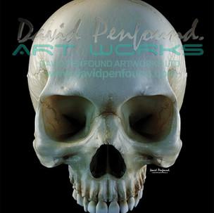 Skull top
