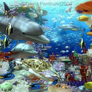 Ocean Splendour