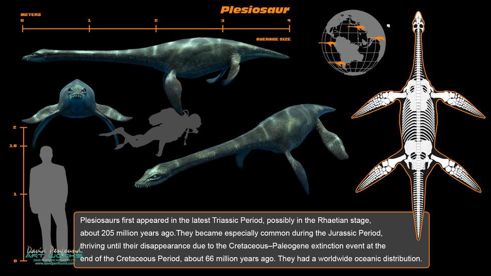 Plesiosaur info screen Time Machine Aquarium