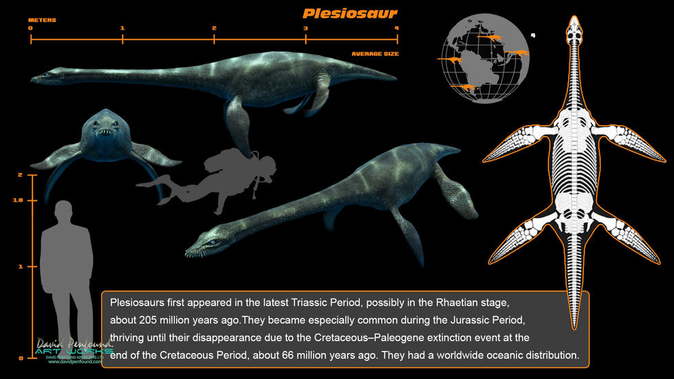 Plesiosaur Info screen