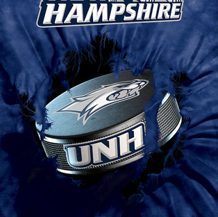 UNH1 Hockey Puck