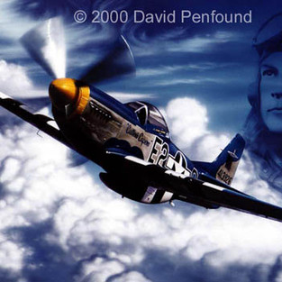 Mustang P51 Painting