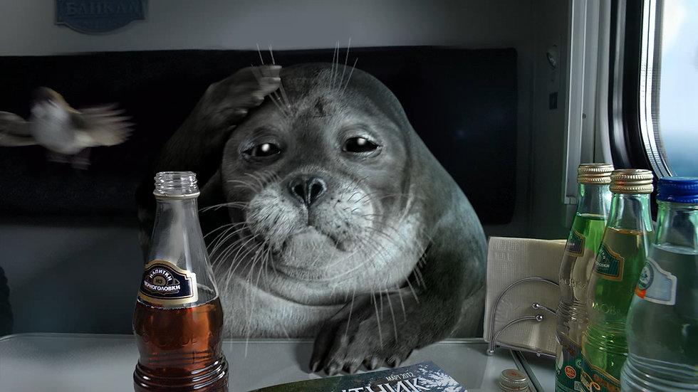 seal_2.2.1.jpg
