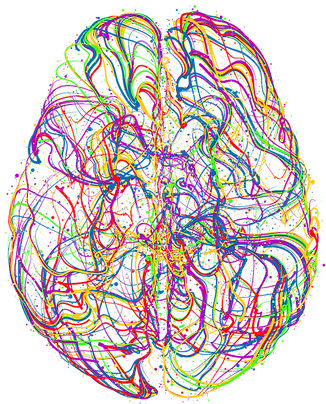 Colored-Brain.png