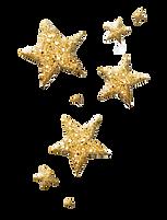 30-301642_christmas-sparkling-stars-pinterest-transparent-background-glitter-star_edited.p