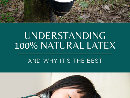 Understanding 100% Natural Latex and Why It's the Best