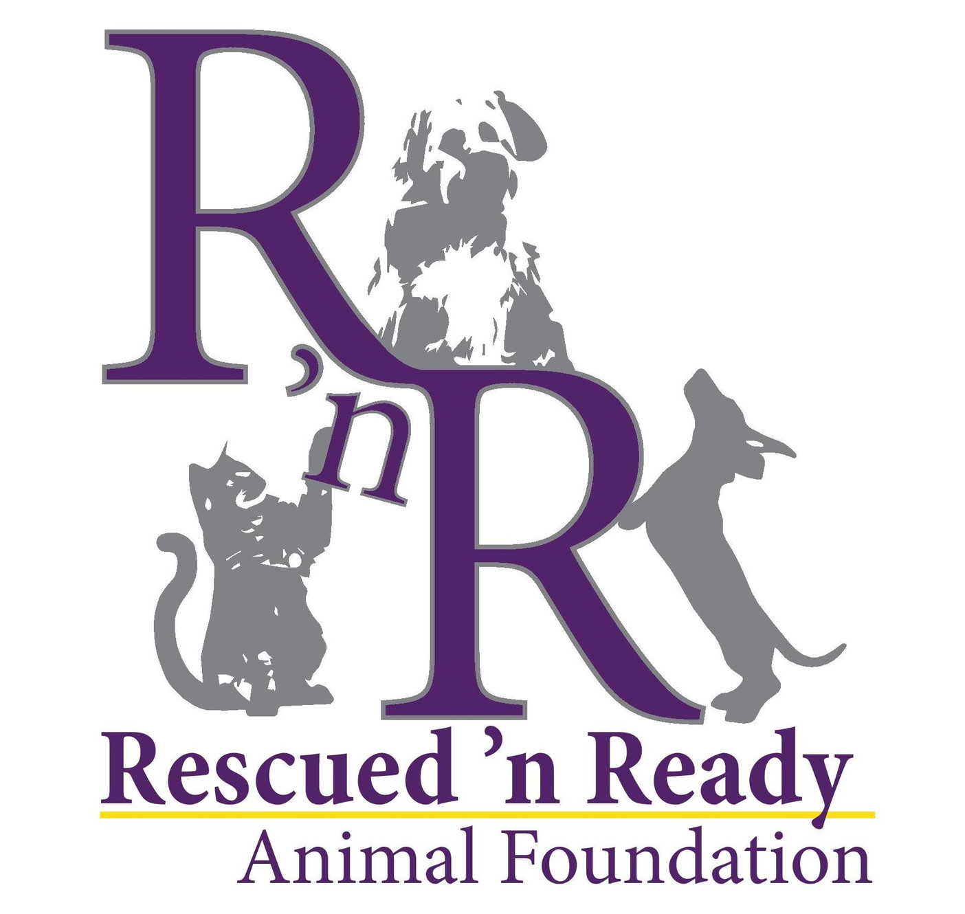 Medical Needs | About Rescued 'n Ready Animal Foundation